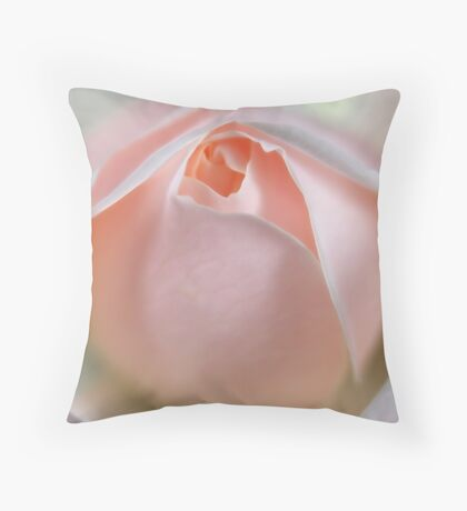 Winchester Cathedral - Pink Throw Pillow