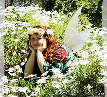 The Daisy Fairy by Rookwood Studio ©