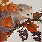 Sneaky Opposum Stealing Grapes by mhm710