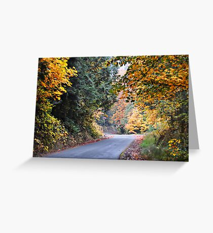Winding Mountain road Greeting Card