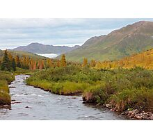 Willow Creek II Photographic Print