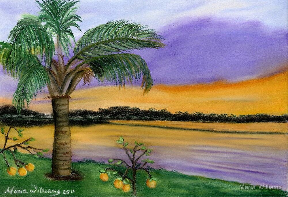 Floridian Sunset by Maria  Williams