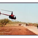 Kimberley Chopper Muster by wildfillies
