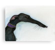 A Little Crooked Nose - Greyhound Art Canvas Print