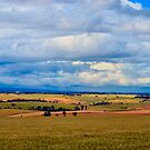 SA Landscape by Bami