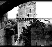 Warwick Castle, England 2011 by Dennis  Greenhill