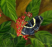 Giant Swallowtail by Maria  Williams