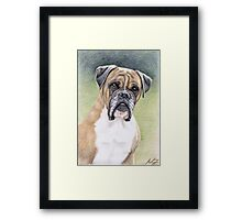 Portrait Boxer Hutch Framed Print