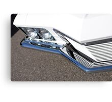 Grille & Ground Canvas Print