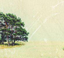 pine on farmland I Sticker