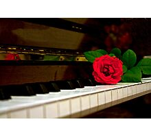 ROMANTIC RED ROSE FLOWER ON PIANO Photographic Print