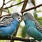 Love Birds by Sue Ellen Thompson