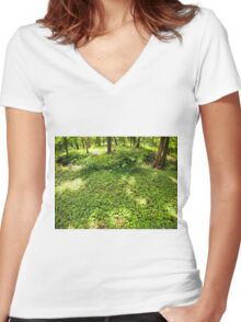 The green lawn in a park in the shade of trees Women's Fitted V-Neck T-Shirt