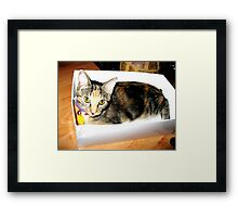 I'll take this one. Framed Print