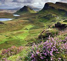 Scotland: My Bonny Heather by Celtic Mystery