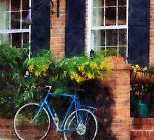 Parked Bicycle by Susan Savad