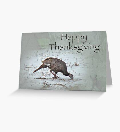 Thanksgiving Card - Wild Turkeys Greeting Card