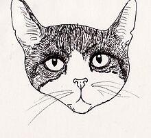 Cat by Ercan  Sert