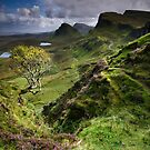Skye: Heather, Hawthorn & Light by Angie Latham