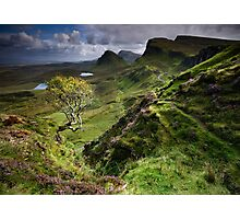 Skye: Heather, Hawthorn & Light Photographic Print