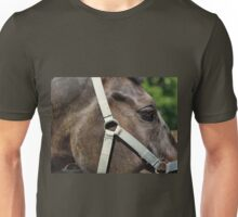 Fragment of a horse's head with a bridle close up Unisex T-Shirt