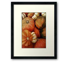 Pumpkin Time Framed Print