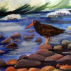 The Oystercatcher by Cal Kimola Brown