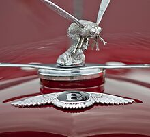1934 Bentley 3.5-Litre Drophead Coupe Hood Ornament by Jill Reger