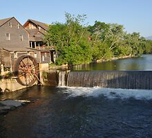The Old Mill by Butterfly2008