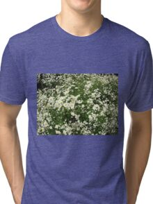 Large field overgrown with small white daisy flower Tri-blend T-Shirt