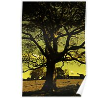 Tree of Noble Truths Poster
