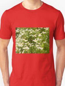 Defocused and blur bushes camomile flowers Unisex T-Shirt