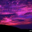 Wild Skies by Mechelep