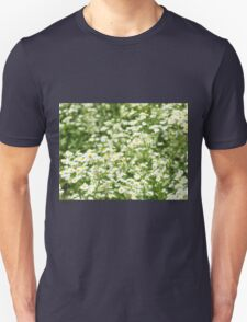 Large field overgrown with small white daisy flowers closeup Unisex T-Shirt