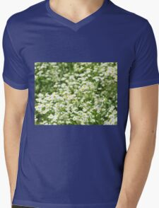 Large field overgrown with small white daisy flowers closeup Mens V-Neck T-Shirt