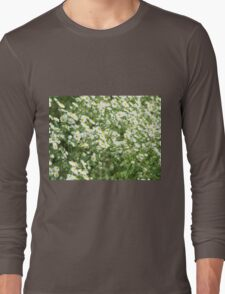 Large field overgrown with small white daisy flowers closeup Long Sleeve T-Shirt