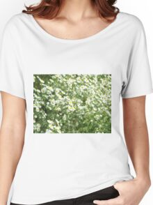 Large field overgrown with small white daisy flowers closeup Women's Relaxed Fit T-Shirt