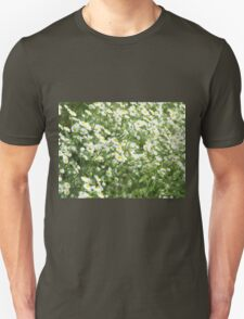Large field overgrown with small white daisy flowers closeup T-Shirt