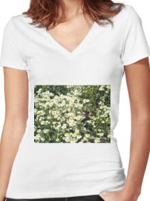 Dense thickets of small white daisies in a meadow Women's Fitted V-Neck T-Shirt