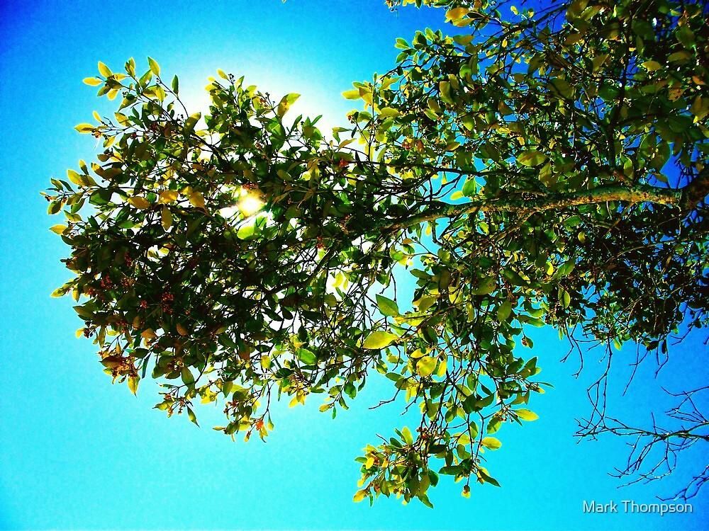 colour shade by mark thompson