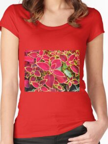 Red Coleus plant closeup Women's Fitted Scoop T-Shirt