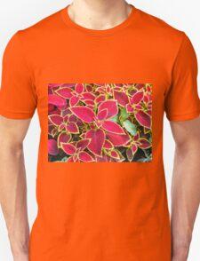 Red Coleus plant closeup T-Shirt