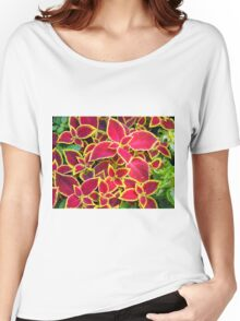 Red Coleus plants closeup Women's Relaxed Fit T-Shirt