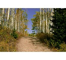 Country Road of Color Photographic Print