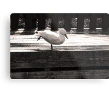 Duck Yoga Metal Print