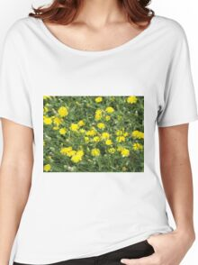 Thickets of small yellow flowers Picris Rigida Women's Relaxed Fit T-Shirt