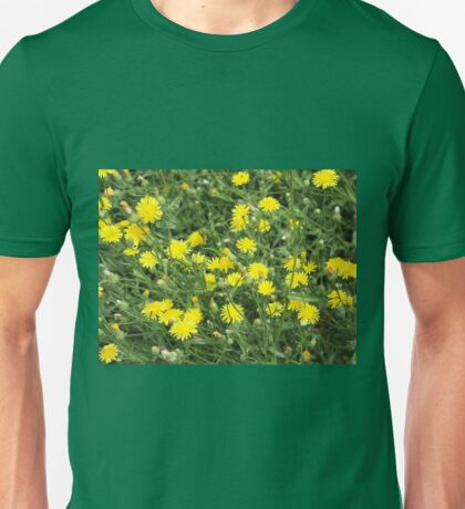 Thickets of small yellow flowers Picris Rigida Unisex T-Shirt