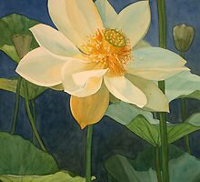 Majestic Lotus by Jan Lawnikanis