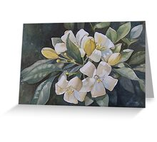 Spring Gifts Greeting Card