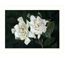Gardenia Duo 2 Art Print